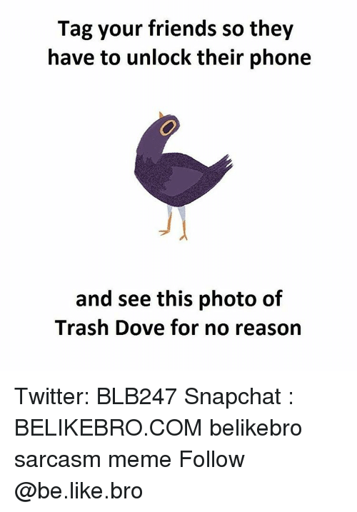 Memes, 🤖, and Doves: Tag your friends so they  have to unlock their phone  and see this photo of  Trash Dove for no reason Twitter: BLB247 Snapchat : BELIKEBRO.COM belikebro sarcasm meme Follow @be.like.bro