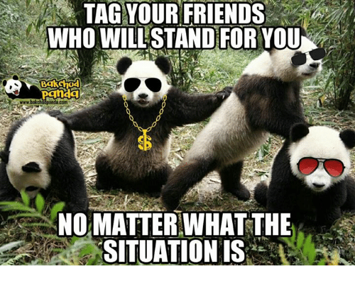 Friends, Memes, and Panda: TAG YOUR FRIENDS  WHO WILL STANDiFOR YOU  Bgkchod  Panda  www.bakcho  com  NO MATTER WHAT THE  SITUATION IS