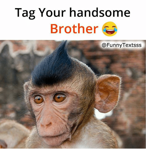 Funny Memes For Your Brother : Best memes about funny