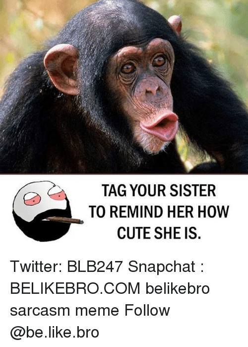 sister: TAG YOUR SISTER  TO REMIND HER HOW  CUTE SHE IS. Twitter: BLB247 Snapchat : BELIKEBRO.COM belikebro sarcasm meme Follow @be.like.bro