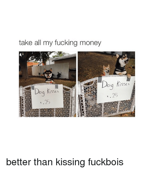 Money Dog: take all my fucking money  Dog  is sts  ISSE s better than kissing fuckbois