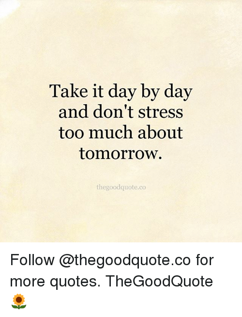 Memes, Too Much, and Quotes: Take it day by day  and don't stress  too much about  tomorrow.  thegoodquote.co Follow @thegoodquote.co for more quotes. TheGoodQuote 🌻