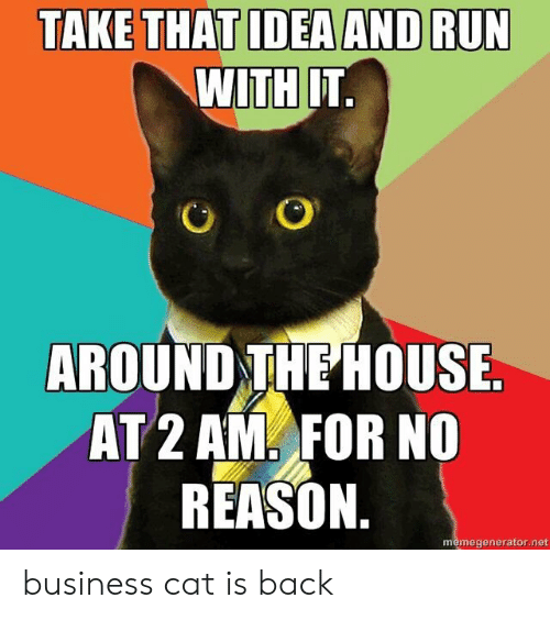 memegenerator: TAKE THAT IDEA AND RUN  WITH IT.  AROUND THE HOUSE.  AT 2 AM FOR NO  REASON.  memegenerator.net business cat is back