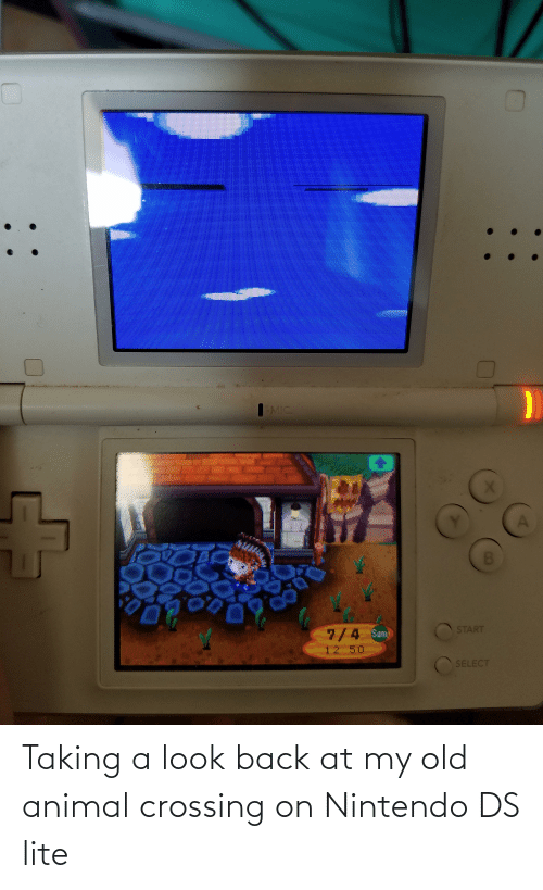 ds lite: Taking a look back at my old animal crossing on Nintendo DS lite