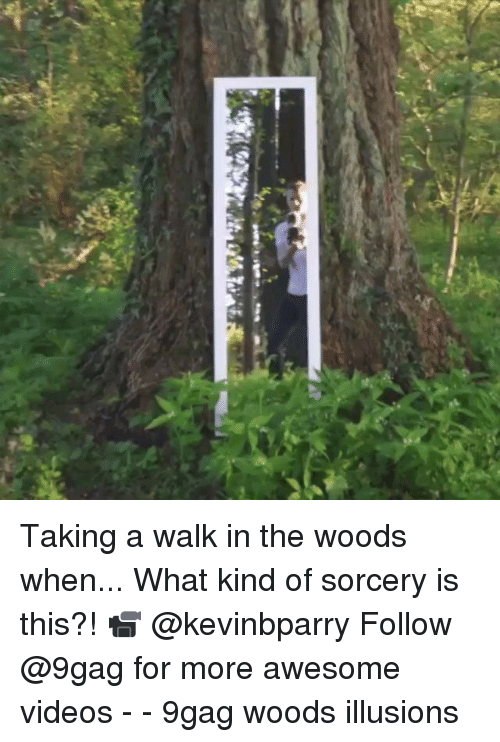 9gag, Memes, and Videos: Taking a walk in the woods when... What kind of sorcery is this?! 📹 @kevinbparry Follow @9gag for more awesome videos - - 9gag woods illusions
