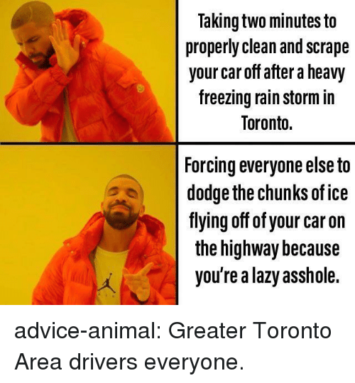 Dodge: Taking two minutes to  properly clean and scrape  your car off after a heavy  freezing rain storm in  Toronto.  Forcing everyone else to  dodge the chunks of ice  fiying off of your car on  the highway because  you're a lazy asshole. advice-animal:  Greater Toronto Area drivers everyone.
