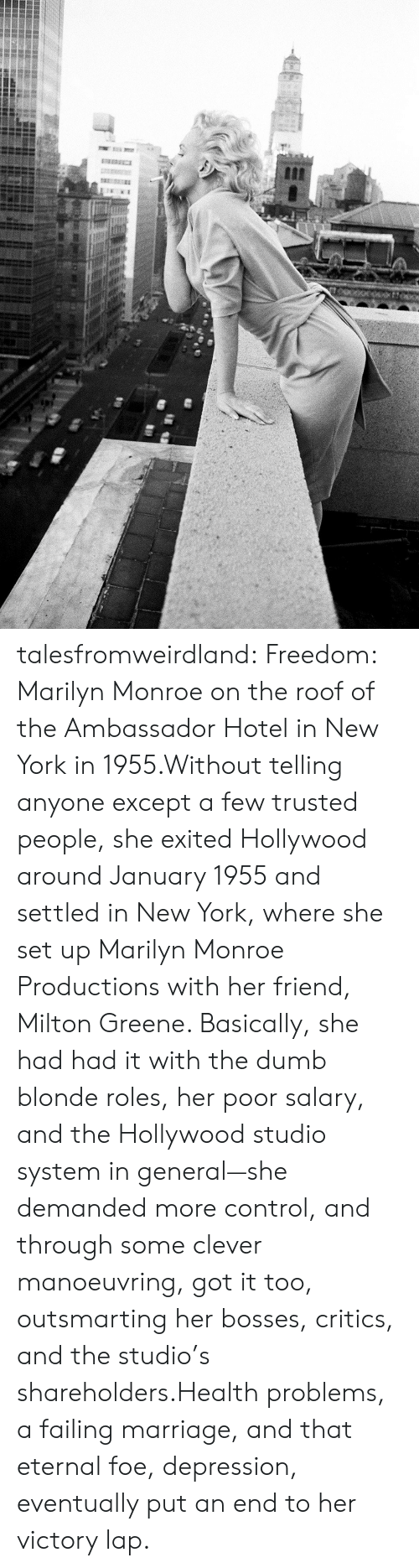Marilyn Monroe: talesfromweirdland:  Freedom: Marilyn Monroe on the roof of the Ambassador Hotel in New York in 1955.Without telling anyone except a few trusted people, she exited Hollywood around January 1955 and settled in New York, where she set up Marilyn Monroe Productions with her friend, Milton Greene. Basically, she had had it with the dumb blonde roles, her poor salary, and the Hollywood studio system in general—she demanded more control, and through some clever manoeuvring, got it too, outsmarting her bosses, critics, and the studio's shareholders.Health problems, a failing marriage, and that eternal foe, depression, eventually put an end to her victory lap.