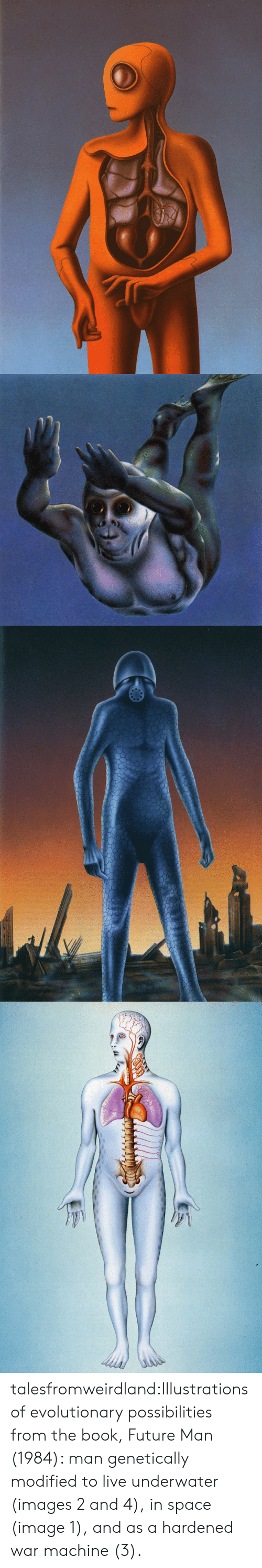 War Machine: talesfromweirdland:Illustrations of evolutionary possibilities from the book, Future Man (1984): man genetically modified to live underwater (images 2 and 4), in space (image 1), and as a hardened war machine (3).