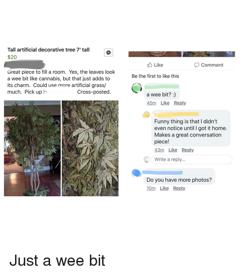 Funny, Wee, and Cross: Tall artificial decorative tree 7' tall  $20  Like  Comment  Great piece to fill a room. Yes, the leaves look  a wee bit like cannabis, but that just adds to  its charm. Could use more artificial grass/  much. Pick up in  Be the first to like this  Cross-posted  a wee bit?:)  45m Like Reply  Funny thing is that I didn't  even notice until I got it home  Makes a great conversation  piece!  43m Like Reply  Write a reply  Do you have more photos?  10m Like Reply