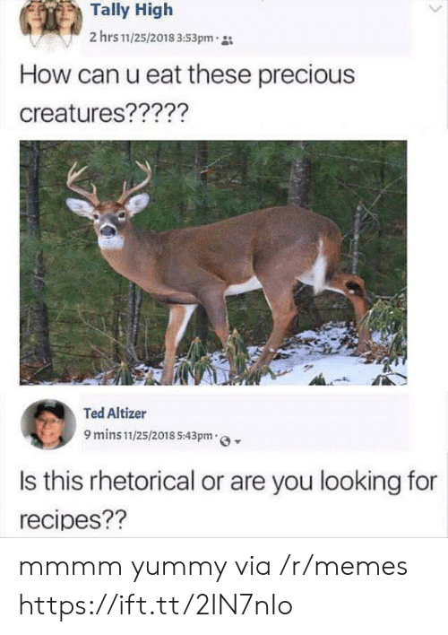 mmmm: Tally High  2 hrs 11/25/2018 3:53pm  How can u eat these precious  creatures?????  Ted Altizer  9 mins 11/25/2018 5:43pm  Is this rhetorical or are you looking for  recipes?? mmmm yummy via /r/memes https://ift.tt/2IN7nIo