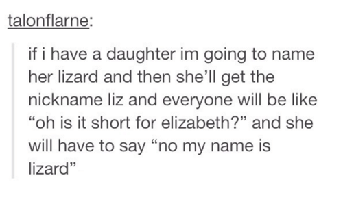 """dank: talonflarne:  if i have a daughter im going to name  her lizard and then she'll get the  nickname liz and everyone will be like  """"oh is it short for elizabeth?"""" and she  will have to say """"no my name is  lizard"""""""
