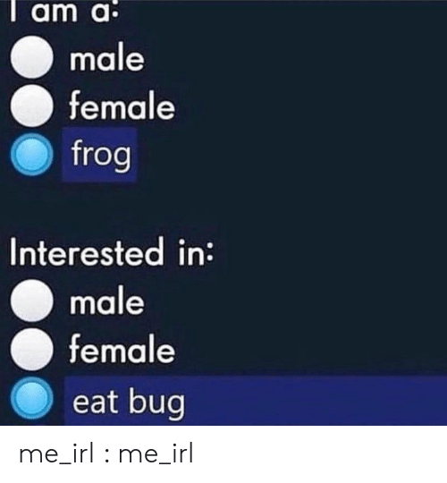 frog: Tam a:  male  female  frog  Interested in:  male  female  eat bug me_irl : me_irl