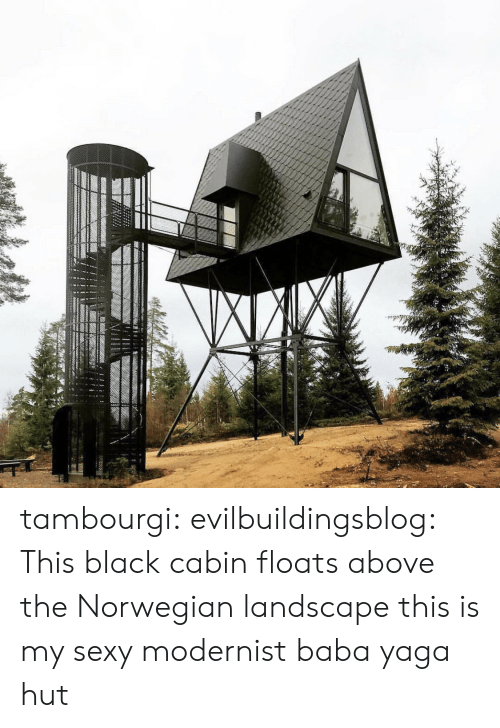 Norwegian: tambourgi:  evilbuildingsblog: This black cabin floats above the Norwegian landscape this is my sexy modernist baba yaga hut