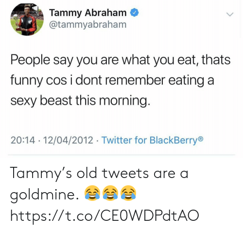 Abraham: Tammy Abraham  @tammyabraham  People say you are what you eat, thats  funny cos i dont remember eating a  sexy beast this morning.  20:14 12/04/2012 Twitter for BlackBerry Tammy's old tweets are a goldmine. 😂😂😂 https://t.co/CE0WDPdtAO