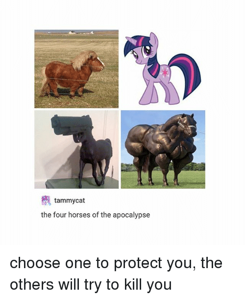 Choose One, Horses, and Trendy: tammycat  the four horses of the apocalypse choose one to protect you, the others will try to kill you
