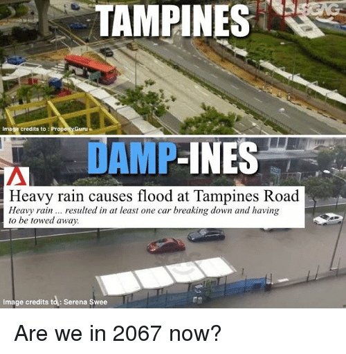 Memes, Image, and Rain: TAMPINES  Image credits to :Proporty Guru  AMP-INES  Heavy rain causes flood at Tampines Road  Heavy rainresulted in at least one car breaking down and having  to be towed away.  Image credits to: Serena Swee Are we in 2067 now?