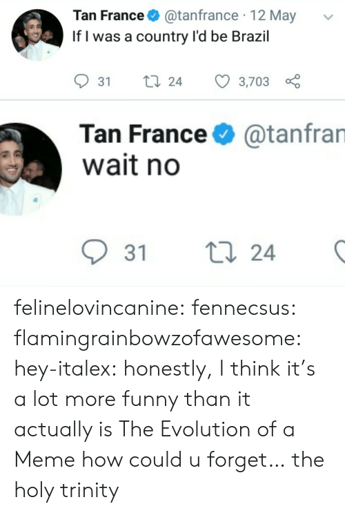 trinity: Tan France@tanfrance 12 May  If l was a country l'd be Brazil  31 ti 24 3,703  Tan France  wait no  @tanfran  31 t  24 felinelovincanine:  fennecsus:   flamingrainbowzofawesome:  hey-italex: honestly, I think it's a lot more funny than it actually is The Evolution of a Meme  how could u forget…   the holy trinity