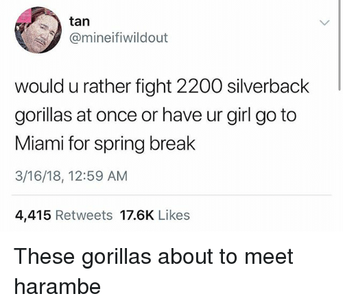 Spring Break, Break, and Girl: tan  mineifiwildout  would u rather fight 2200 silverback  gorillas at once or have ur girl go to  Miami for spring break  3/16/18, 12:59 AM  4,415 Retweets 17.6K Likes These gorillas about to meet harambe