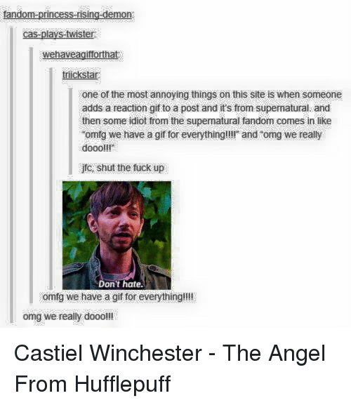 "reaction gifs: tandom-princess-rising-demon  cas-plays-twister  wehaveagiforthat  icksta  one of the most annoying things on this site is when someone  adds a reaction gif to a post and it's from supernatural and  then some idiot from the supermatural fandom comes in like  ""omfg we have a gif for everything!!!! and ""omg we really  doooll!  jfo, shut the fuck up  Don't hate.  omfg we have a gif for everything!!!!  omg we really dooo!!! Castiel Winchester - The Angel From Hufflepuff"