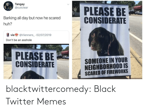 Huh, Memes, and Tumblr: Tangay  @cutclear  PLEASE BE  CONSIDERATE  Barking all day but now he scared  huh?  vie  @Vienners_· 02/07/2019  Don't be an asshole  PLEASE BE  CONSIDERATE  SOMEONE IN YOUR  NEIGHBORHOOD IS  SCARED OF FIREWORKS blacktwittercomedy:  Black Twitter Memes