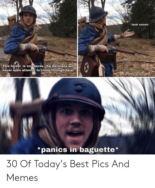 germans: tank noises  This forest is too dense, the Germans will  never even attempt to come through here!  *panics in baguette 30 Of Today's Best Pics And Memes