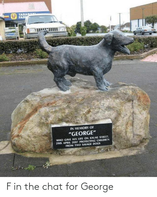 """protecting: TARANAK  FARM  IN MEMORY OF  """"GEORGE""""  WHO GAVE HIS LIFE ON KAUAE STREET,  29th APRIL 2007 PROTECTING CHILDREN  FROM TWO SAVAGE DOGS F in the chat for George"""