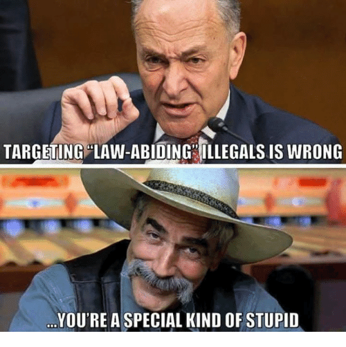 Youre A Special Kind Of Stupid: TARGETING LAW-ABIDING ILLEGALS IS WRONG  YOU'RE A SPECIAL KIND OF STUPID