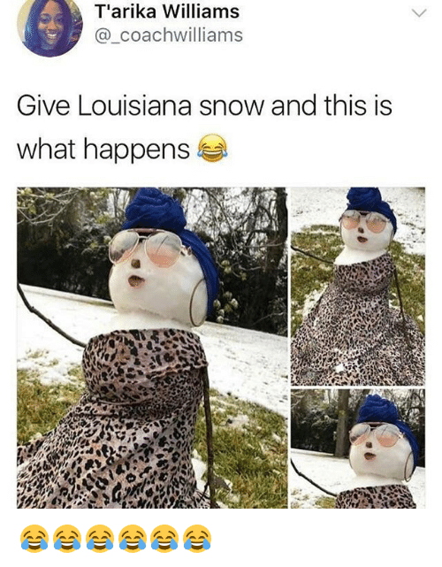 Louisiana, Snow, and Girl Memes: T'arika Williams  @_coachwilliams  Give Louisiana snow and this is  what happens 😂😂😂😂😂😂