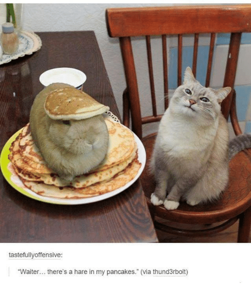 """Pancaking: tastefullyoffensive:  """"Waiter... there's a hare in my pancakes."""" (via thund3rbolt)"""