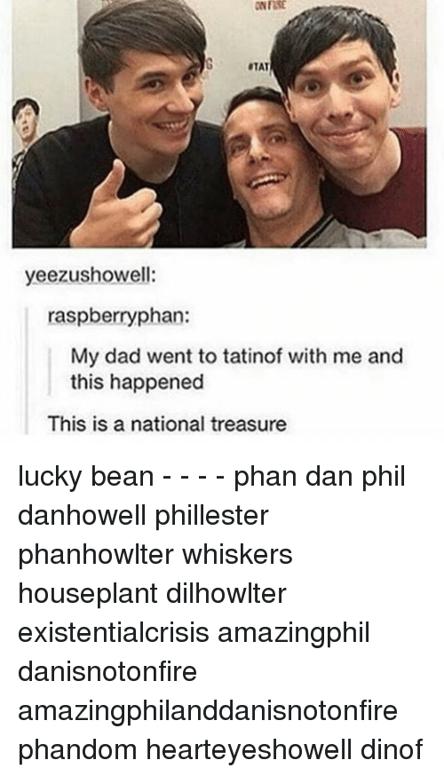 Memes, 🤖, and Bean: TAT  yeezushowell:  raspberry phan:  My dad went to tatinof with me and  this happened  This is a national treasure lucky bean - - - - phan dan phil danhowell phillester phanhowlter whiskers houseplant dilhowlter existentialcrisis amazingphil danisnotonfire amazingphilanddanisnotonfire phandom hearteyeshowell dinof
