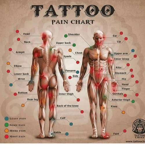 Tattoo pain chart head shoulder ear neck upper back armpit for Tattoo on forearm pain