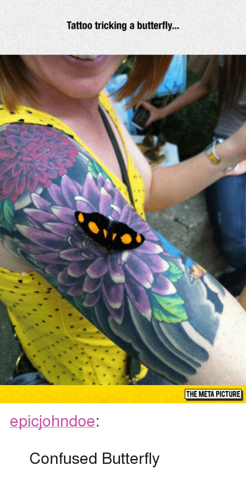 """Tricking: Tattoo tricking a butterfly...  THE META PICTURE <p><a href=""""https://epicjohndoe.tumblr.com/post/172729430414/confused-butterfly"""" class=""""tumblr_blog"""">epicjohndoe</a>:</p>  <blockquote><p>Confused Butterfly</p></blockquote>"""