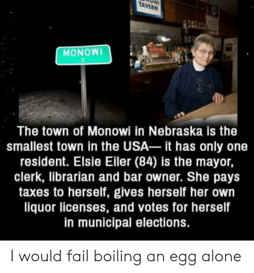Nebraska: TAVERN  MONOWI  The town of Monowi in Nebraska is the  smallest town in the USA it has only one  resident. Elsie Eiler (84) is the mayor,  clerk, librarian and bar owner. She pays  taxes to herself, gives herself her own  liquor licenses, and votes for herself  in municipal elections. I would fail boiling an egg alone