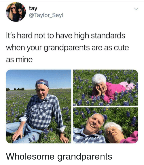 Cute, Wholesome, and Mine: tay  @Taylor_Seyl  It's hard not to have high standards  when your grandparents are as cute  as mine <p>Wholesome grandparents</p>