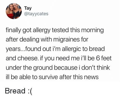 Memes, News, and 🤖: Tay  @tayycates  finally got allergv tested this morning  after dealing with migraines for  years..found out i'm allergic to bread  and cheese. if you need me i'll be 6 feet  under the ground because i don't think  ill be able to survive after this news Bread :(