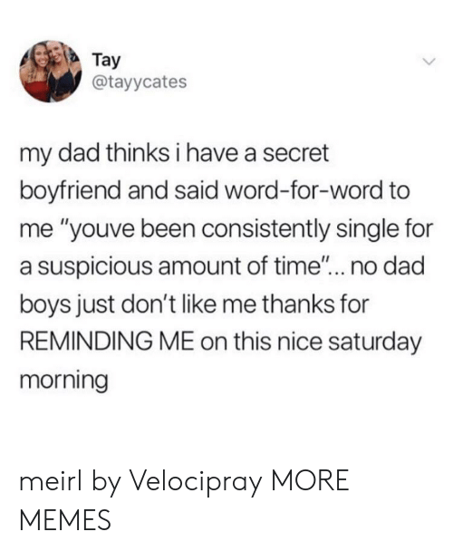 """No Dad: Tay  @tayycates  my dad thinks i have a secret  boyfriend and said word-for-word to  me """"youve been consistently single for  a suspicious amount of time... no dad  boys just don't like me thanks for  REMINDING ME on this nice saturday  morning meirl by Velocipray MORE MEMES"""