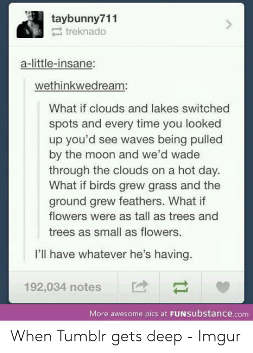 You Looked: taybunny711  treknado  a-little-insane:  wethinkwedream:  What if clouds and lakes switched  spots and every time you looked  up you'd see waves being pulled  by the moon and we'd wade  through the clouds on a hot day.  What if birds grew grass and the  ground grew feathers. What if  flowers were as tall as trees and  trees as small as flowers.  I'll have whatever he's having.  192,034 notes  More awesome pics at FUNSubstance.com When Tumblr gets deep - Imgur