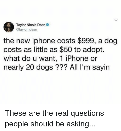 the new iphone: Taylor Nicole Dean  @taylorndean  the new iphone costs $999, a dog  costs as little as $50 to adopt.  what do u want, 1 iPhone or  nearly 20 dogs??? All I'm sayin These are the real questions people should be asking...
