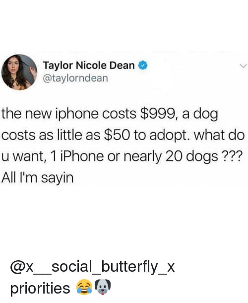 the new iphone: Taylor Nicole Dean  @taylorndean  the new iphone costs $999, a dog  costs as little as $50 to adopt. what do  u want, 1 iPhone or nearly 20 dogs ???  All I'm sayirn @x__social_butterfly_x priorities 😂🐶