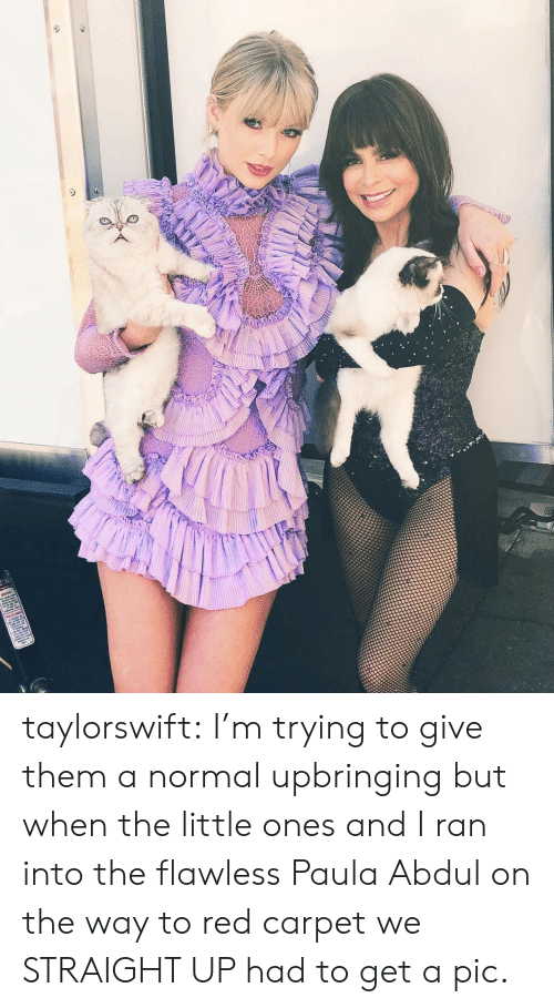 Red Carpet: taylorswift:  I'm trying to give them a normal upbringing but when the little ones and I ran into the flawless Paula Abdulon the way to red carpet we STRAIGHT UP had to get a pic.