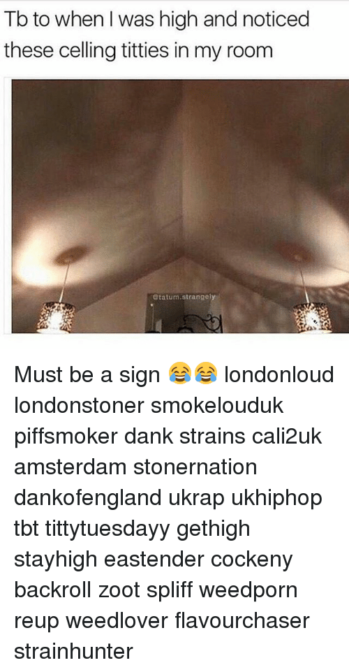 Zooted: Tb to when I was high and noticed  these celling titties in my room  Statum.strangely Must be a sign 😂😂 londonloud londonstoner smokelouduk piffsmoker dank strains cali2uk amsterdam stonernation dankofengland ukrap ukhiphop tbt tittytuesdayy gethigh stayhigh eastender cockeny backroll zoot spliff weedporn reup weedlover flavourchaser strainhunter