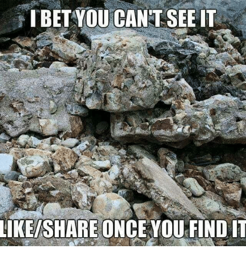 Memes, 🤖, and Once: TBET YOU CAN'T SEE IT  IKE/SHARE ONCE YOU FIND IT