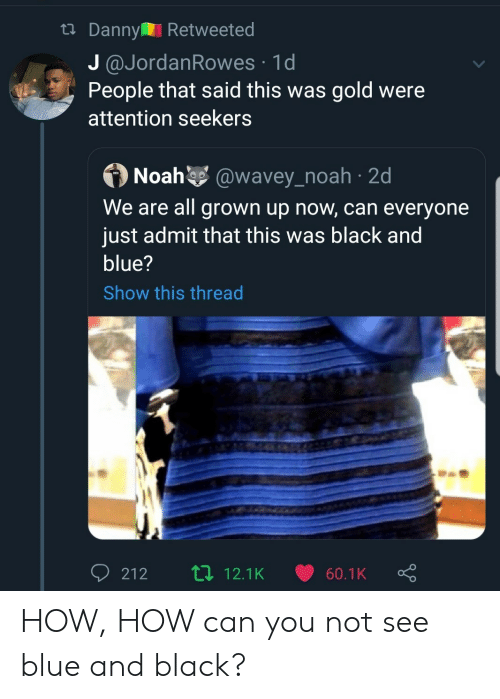all grown up: tDanny Retweeted  J @JordanRowes 1d  People that said this was gold were  attention seekers  Noah @wavey_noah 2d  We are all grown up now, can everyone  just admit that this was black and  blue?  Show this thread  Li 12.1K  212  60.1K HOW, HOW can you not see blue and black?