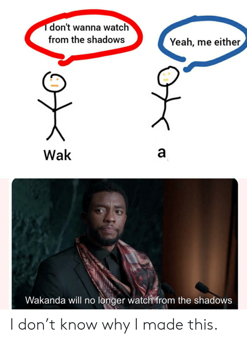 Shadows: Tdon't wanna watch  from the shadows  Yeah, me either  a  Wak  Wakanda will no longer watch from the shadows  CO I don't know why I made this.