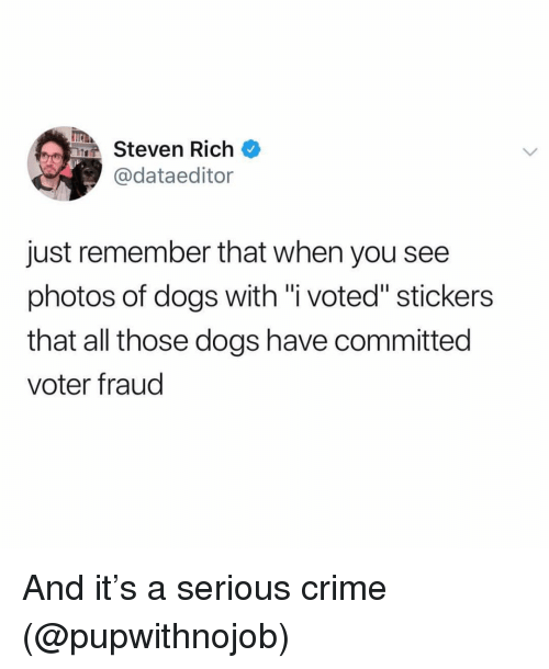 "i voted: TEA  Steven Rich  @dataeditor  just remember that when you see  photos of dogs with ""i voted"" stickers  that all those dogs have committed  voter fraud And it's a serious crime (@pupwithnojob)"