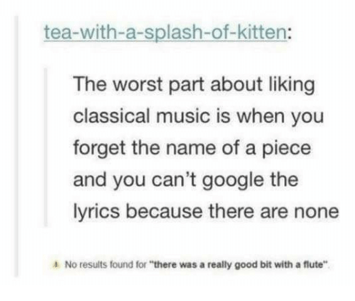 "flute: tea-with-a-splash-of-kitten:  The worst part about liking  classical music is when you  forget the name of a piece  and you can't google the  lyrics because there are none  4 No results found for ""there was a really good bit with a flute"""