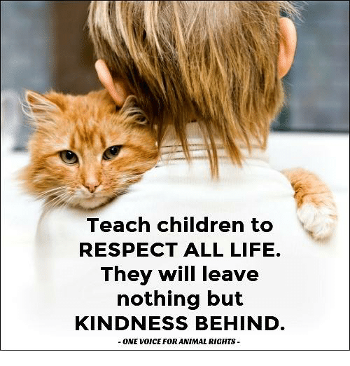 animism: Teach children to  RESPECT ALL LIFE.  They will leave  nothing but  KINDNESS BEHIND  ONE WODICE FOR ANIMAL RIGHTS