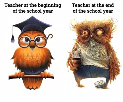 🔥 25+ Best Memes About Teacher Funny Quotes | Teacher Funny ...
