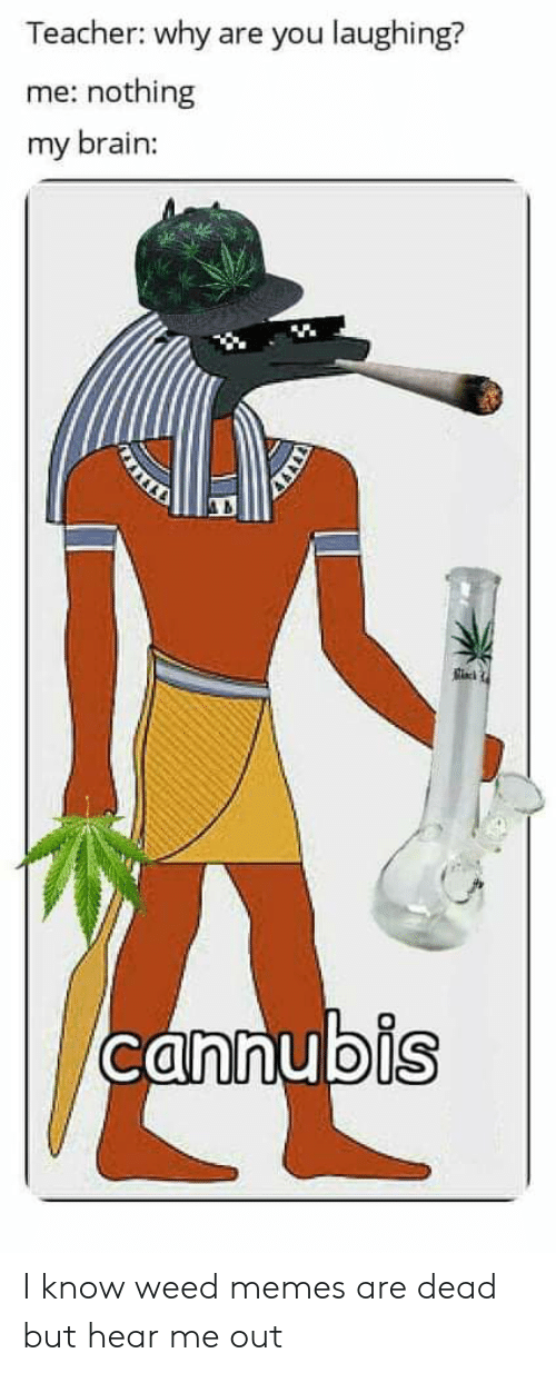 Weed Memes: Teacher: why are you laughing?  me: nothing  my brain:  ois I know weed memes are dead but hear me out