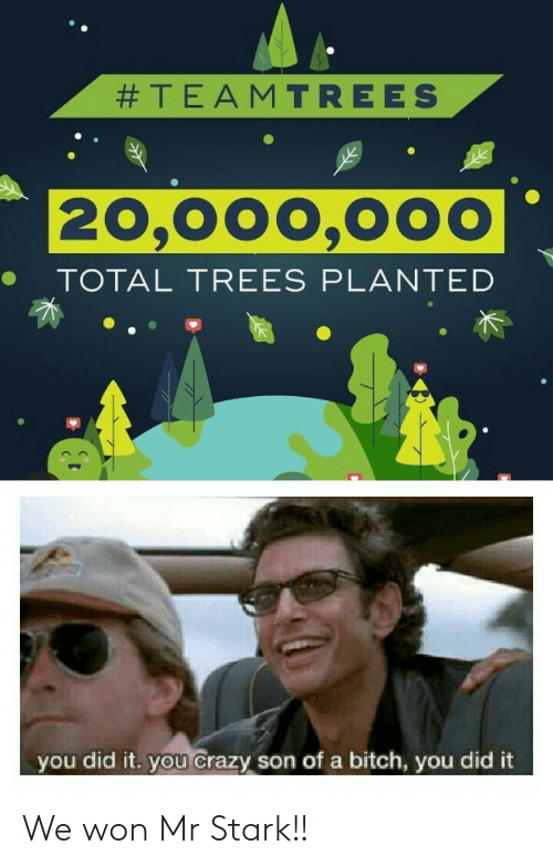 You Did:  #TEAMTREES  20,000,000  TOTAL TREES PLANTED  you did it. you crazy son of a bitch, you did it We won Mr Stark!!